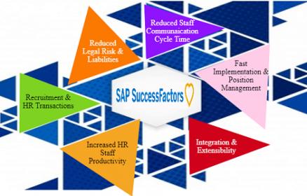 SAP Success Factor Training