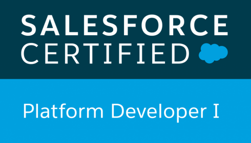 Salesforce Platform Developer